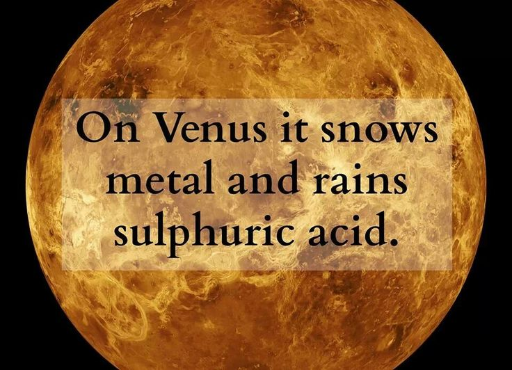 Meet The Morning and Evening Star: Venus    Discover the horrify facts about Venus at: http://www.fromquarkstoquasars.com/meet-the-morning-and-evening-star-venus/  Image via Stomp.com.sg