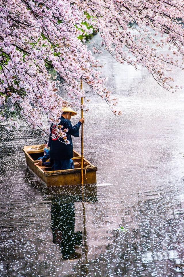 東京カメラ部 Editor's Choice:Yuji Iguchi