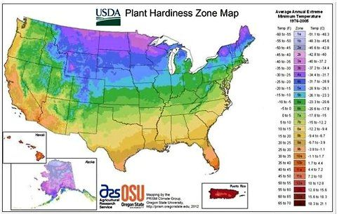Outdated already? The U.S.D.A.'s Plant Hardiness Zone Map for 2012. --For gardeners sad to see the summer drawing to a close, there's some comfort to be drawn from the fall planting season for perennials, trees and shrubs, which is just around the corner. What's more, there's the novelty of this year's updated Plant Hardiness Zone Map, released early this year.