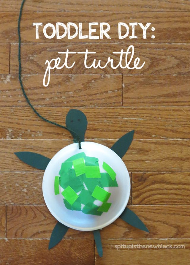 Toddlers will love this DIY pet turtle activity.