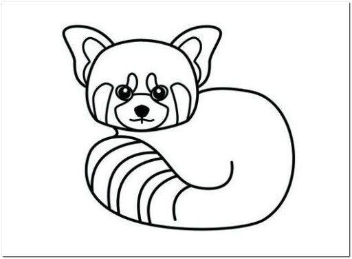 Baby Red Panda Coloring Page Colorir