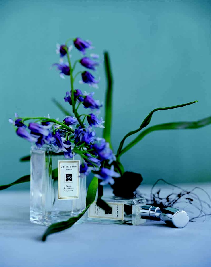 "the perfume: Jo Malone ""wild bluebell"""