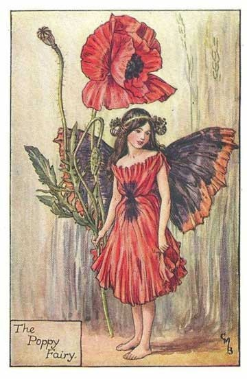 The Poppy Fairy from 'Flower Fairies of the Summer' 1925 by Cicely Mary Barker - PRINT. $5.95, via Etsy.