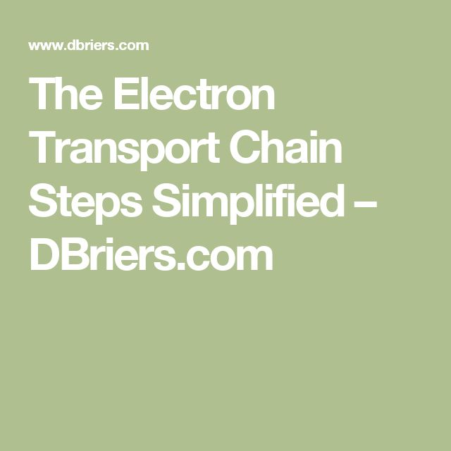 The Electron Transport Chain Steps Simplified – DBriers.com
