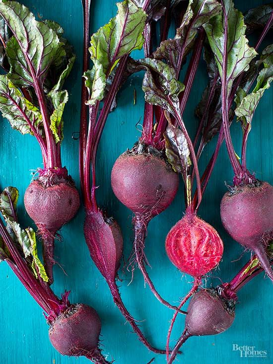 If you love growing vegetables and produce in your garden, you should add beets to your lineup. Learn how to grow beets that taste delicious with your dinner. We're also sharing tips on how to harvest beets and on how to pick the best beet varieties for your garden.