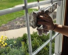 BEST Window Cleaning Solution #DIY