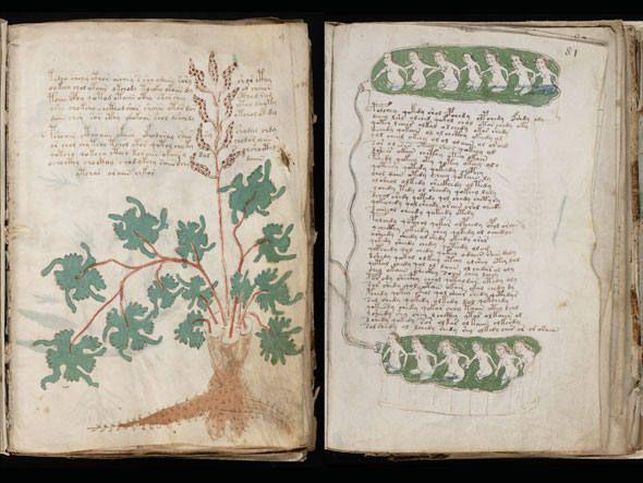 O manuscrito Voynich não foi desvendado pela ciência até hoje