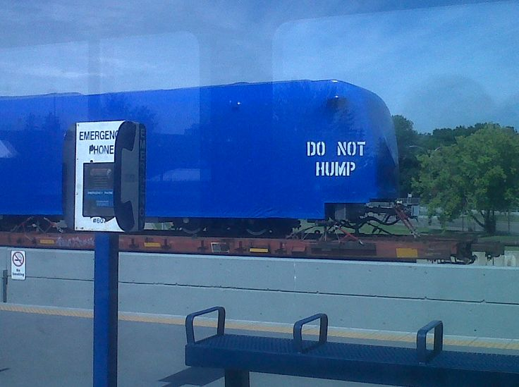 """""""Do not Hump!"""" I wasn't going to anyways!"""