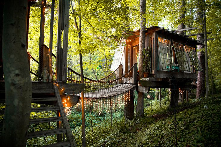 A Trio of Dreamy Treehouses Linked by Bridges
