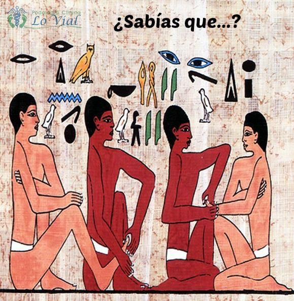 """La historia de la podología se puede remontar hasta miles de años o se puede limitar al siglo pasado y el actual, todo depende de dónde pongamos el foco. Dicen que los primeros podólogos fueron los egipcios cuyos faraones tenían """"cuidadores de sus pies"""". En concreto los historiadores hablan del faraón Amenofis IV, allá por el año 1340 AC, pero mucho antes, en el 2400 AC en unos bajo relieves hallados en la tumba de Ankhmahor muestra la operación de un primer dedo."""