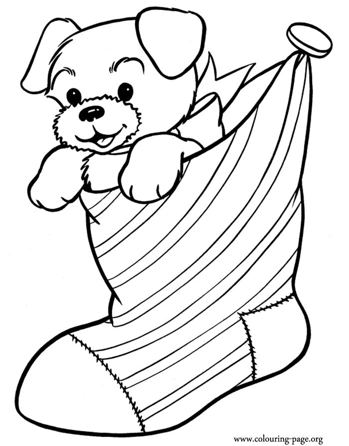Christmas - Puppy inside a Christmas stocking coloring page