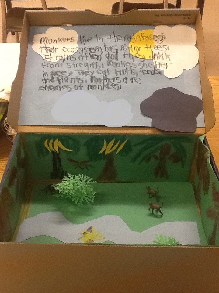 "biome diorama project Select a shoebox, clear box or glass or plastic bottle to hold your biome a shoebox is ideal for a traditional diorama, while a clear box with a lid with holes in the top will allow you to have a ""living"" biome with animals such as worms or butterflies bottles set upright will allow for tall grass to grow out of the spout, or you can."