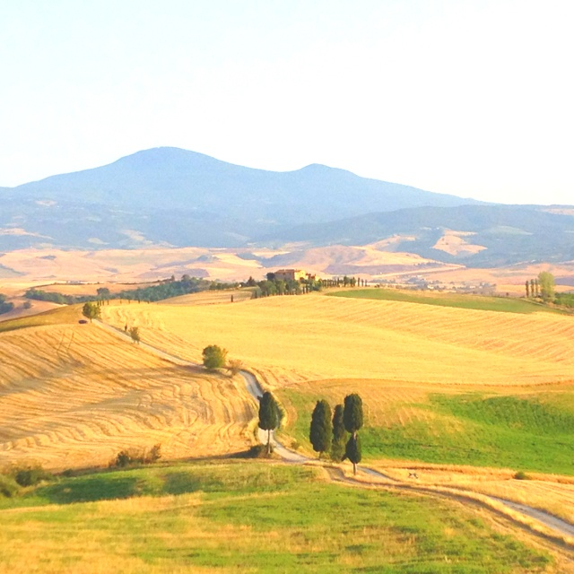Pienza. 'Agriturismo Terrapille'. Ridley Scott chose this place for 'The Gladiator Backhome Street'.