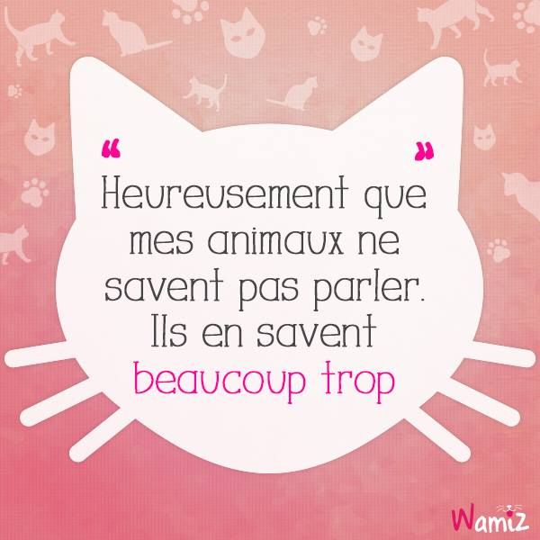 Heureusement que mes animaux ne savent pas parler. Ils en savent beaucoup trop. ------- Luckly my animals can't speak. They know a lot.