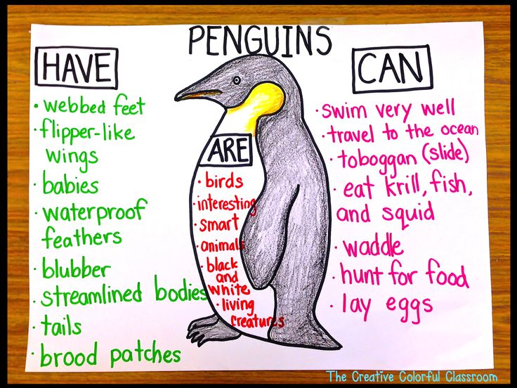 I like this idea for a research station. The Creative Colorful Classroom: Penguin Anchor Chart