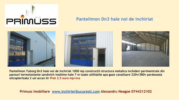 http://www.inchirieribucuresti.com/inchirieri-spatii-industriale/pantelimon-depozit-de-inchiriat-1000mp&P217MHTD