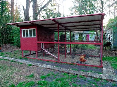 Christine Hennessey: Our New Chicken Coop!
