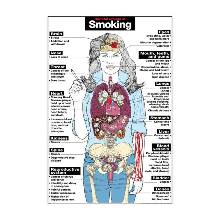 Smoking causes everyone health risks. However, some of its greatest dangers are to women. Learn the risks of smoking and how to quit. #smoking #drinking #womenshealth#fertility #TTC #conception #baby #pregnancy #family #hope #saturday #weekend #evidence #smoking #toxins #health #wellness #womenshealth #women #men #hairloss #hairhealth #healthyhair #hairgrowth #smoking #quitsmoking #stopsmoking #menshealth #womenshealth #menshair #womenshair #resolutions #badhabits #hairlossblog
