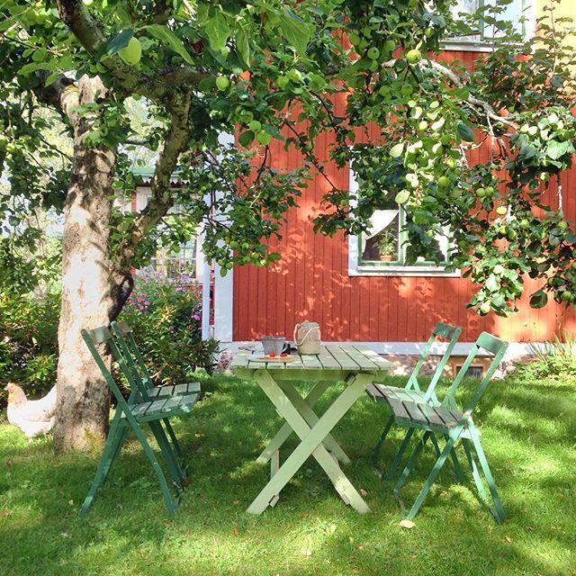 Trädgårdsmöbler under äppleträdet vid husknuten. Foto: Erika Åberg #gamla #hus #rödfärg #trädgårdar #grythyttan