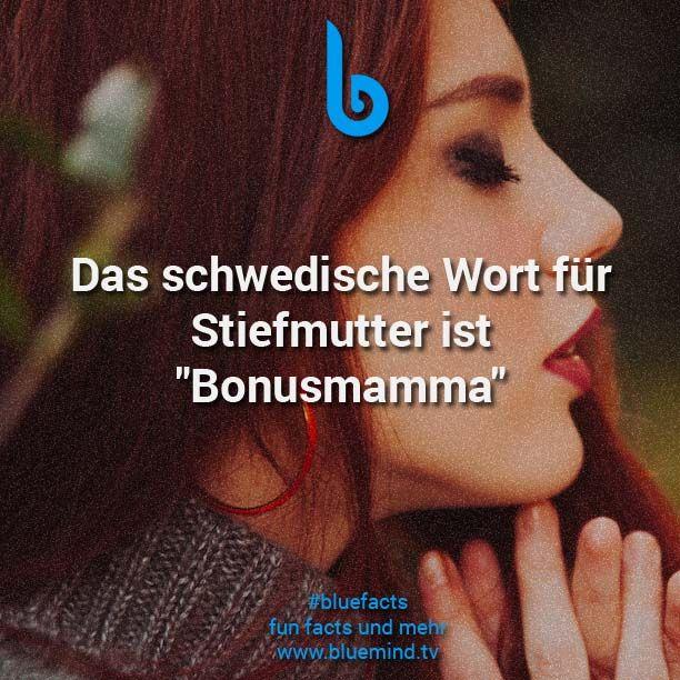 """Das schwedische Wort für Stiefmutter ist """"Bonusmamma"""""""