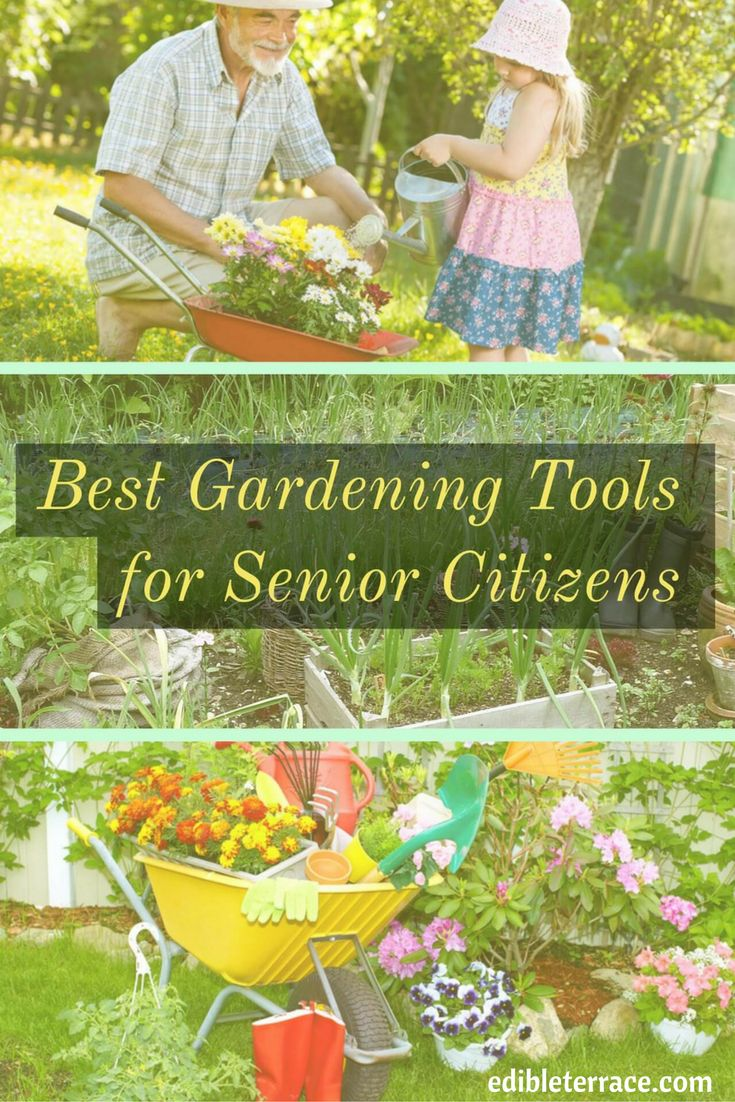 939 best gardening ideas diy images on pinterest for Gardening tools for seniors