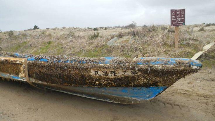 El tsunami de 2011 provoca una de las mayores migraciones marinas de la historia | Ciencia | EL PAÍS
