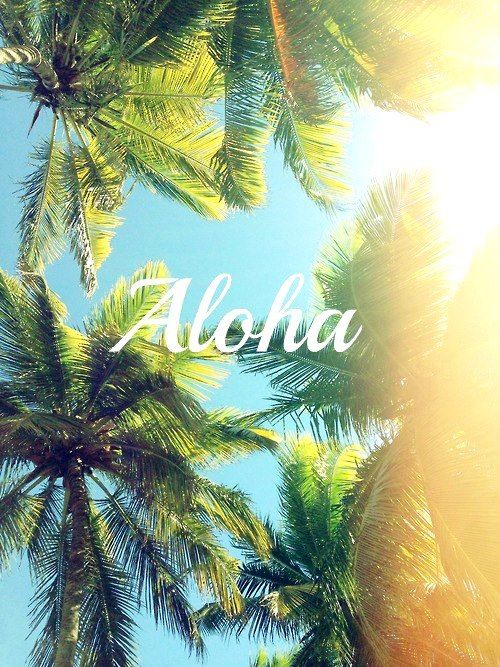 Aloha! Summer is just around the corner #summer #quote +++For more quotes like this, visit http://www.quotesarelife.com/