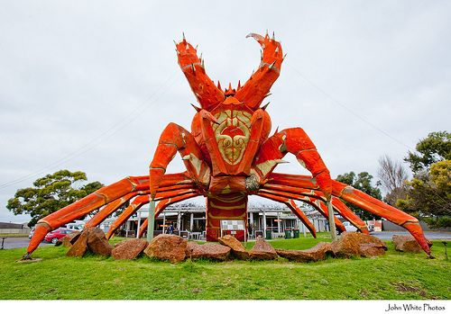 The Big Lobster welcomes you in Kingston S.E., South Australia
