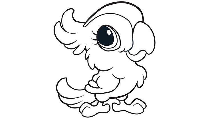 28 best Parrots images on Pinterest