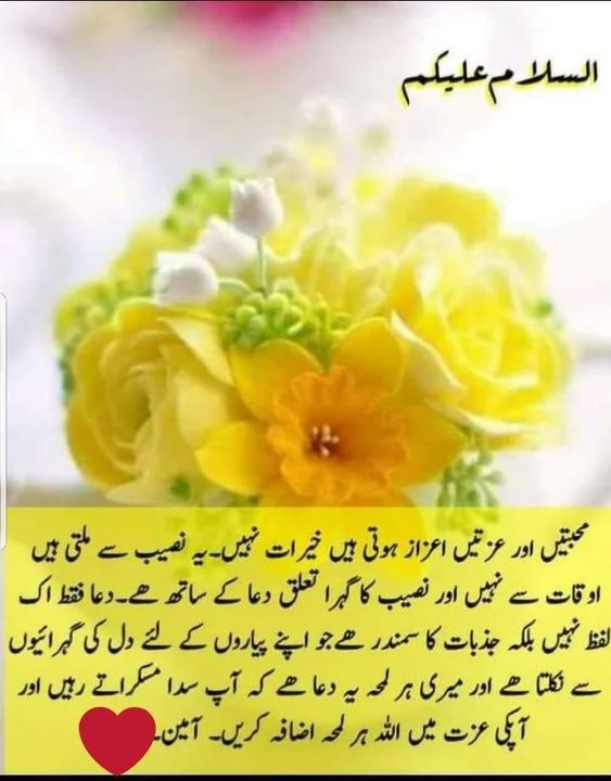 Pin by shaheen perwaz on Subha Bakhair   Morning quotes