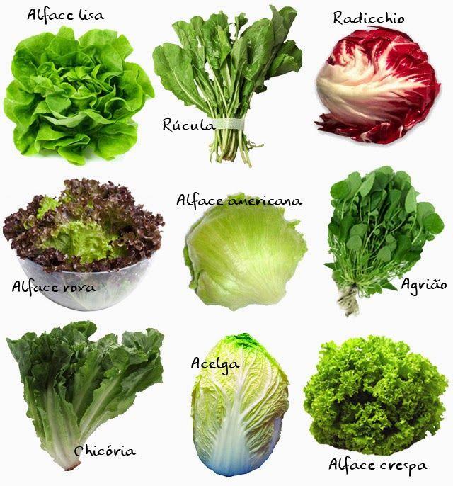 PANELATERAPIA - Blog de Culinária, Gastronomia e Receitas: Saladas: Como Combinar Ingredientes?