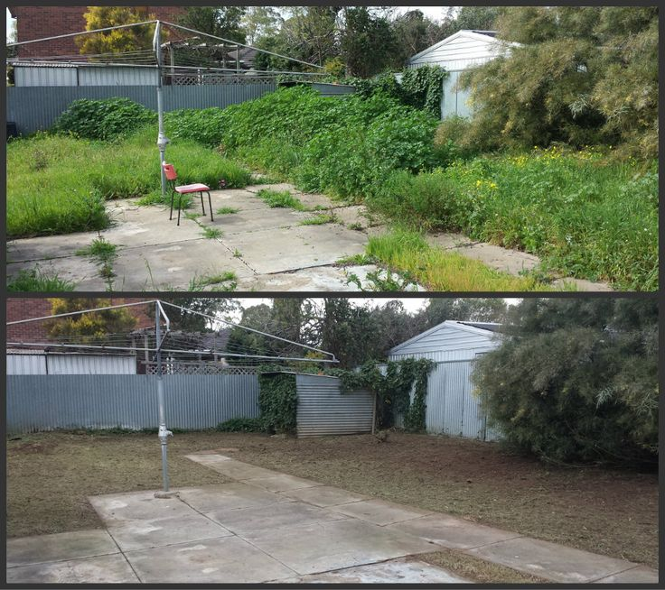 Garden Clean-Up. Weeding, Spraying, Mowing, Edging and General Tidy.  What can Trusted do for you?