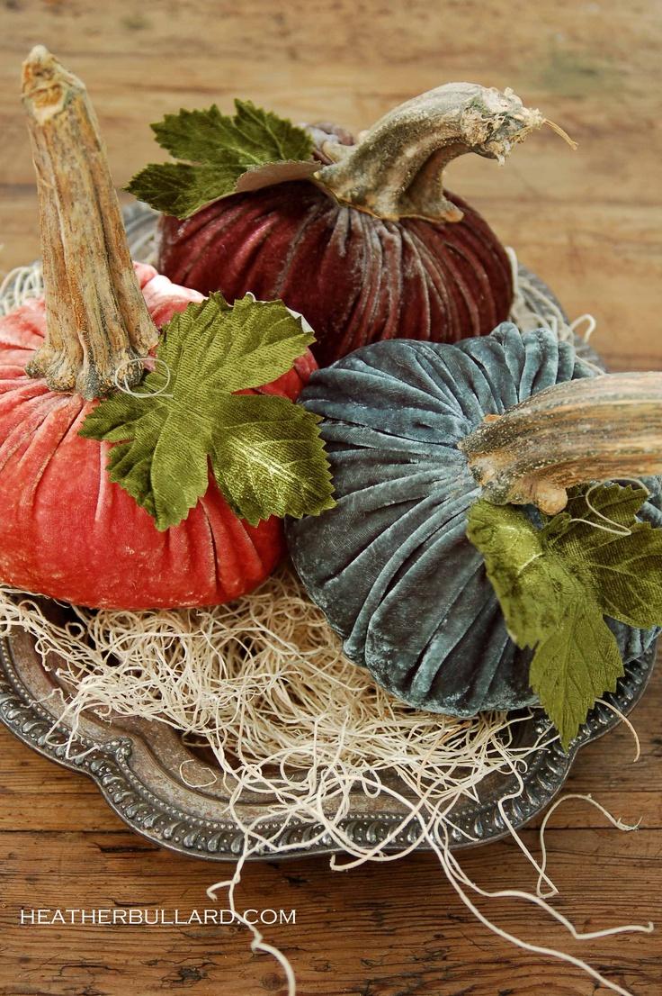 Pumpkin stems for crafts - Pumpkins 2