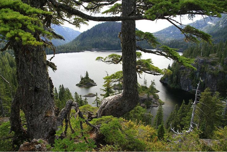 Bedwell Lake - Strathcona Provincial Park, Vancouver Island, British Columbia, Canada