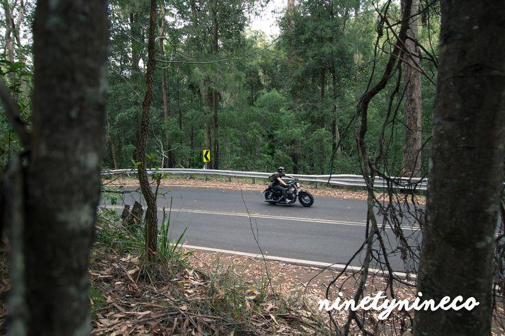 ninetynineco South Coast ride #ninetynineco #motorcycle #sydney #australia #harleydavidson #harley #sportster
