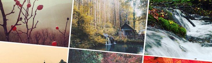 Kihagyhatatlan magyarországi erdők, ahol még idén ősszel érdemes kirándulnotok  Ha egyszer könyvet írok, valószínűleg nem a mérsékelt égövi erdőket vagy az almát választom témának, pedig mindkettőt rajongással szeretem. Ráadásul mindkettőnek ősszel van igazán szezonja.