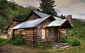 Small wooden cabin in the forest