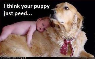 HaHa! Too cute luv it !