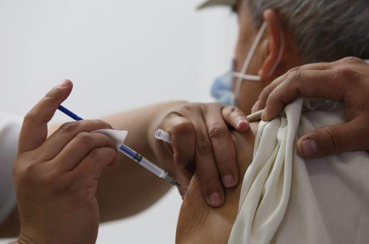 #Emplean plantas para producir nueva vacuna contra el virus de la polio - ElTiempo.com: El Universal - Colombia Emplean plantas para…