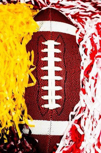 NCAA Football Betting: Free Picks, TV Schedule, Vegas Odds, Florida Gators vs. Missouri Tigers, Oct 10th 2015