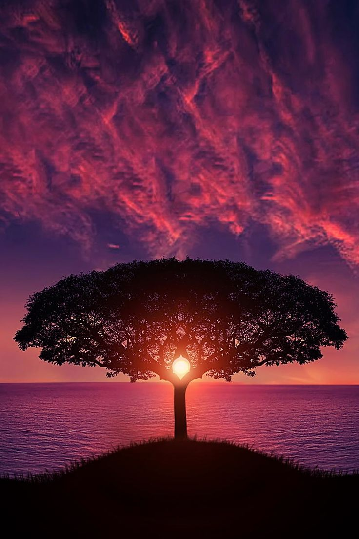 I feel peaceful just looking at this! Photo by Bess Hamiti