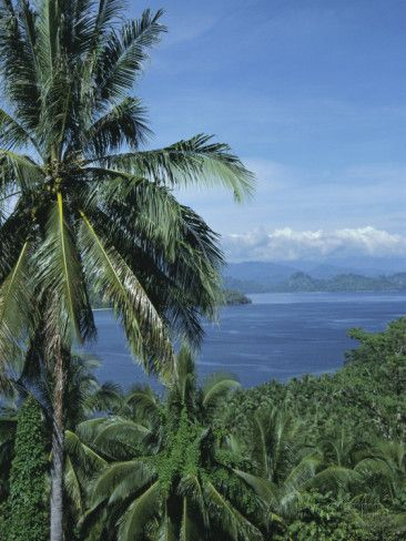Tropical Coastal Scenery, Bougainville Island, Papua New Guinea, Pacific Photographic Print by Mrs Holdsworth at AllPosters.com