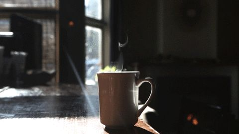 cinemagraph gif hot coffee cinemagraph cup