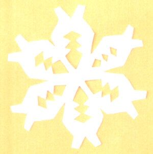 Make your own snowflakes inside!  Snowflake - Paper Relief
