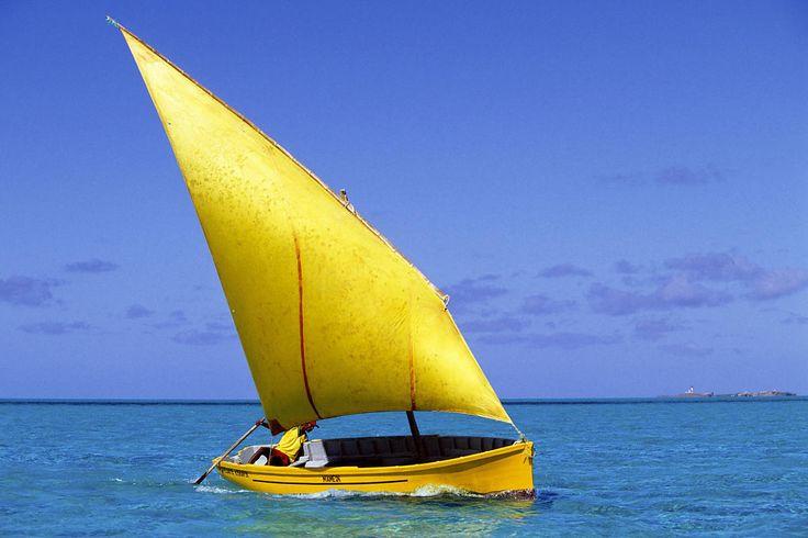 La pirogue mauricienne armée pour pêcher la langouste à l'extérieur du lagon ne porte qu'une seule voile au tiers. Conçue pour affronter la houle du large, sa hauteur de franc-bord est plus importante que celle des embarcations du lagon, lesquelles sont également gréées d'un foc.