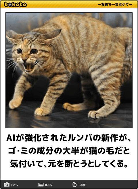 AIが強化されたルンバの新作が、ゴ・ミの成分の大半が猫の毛だと気付いて、元を断とうとしてくる。