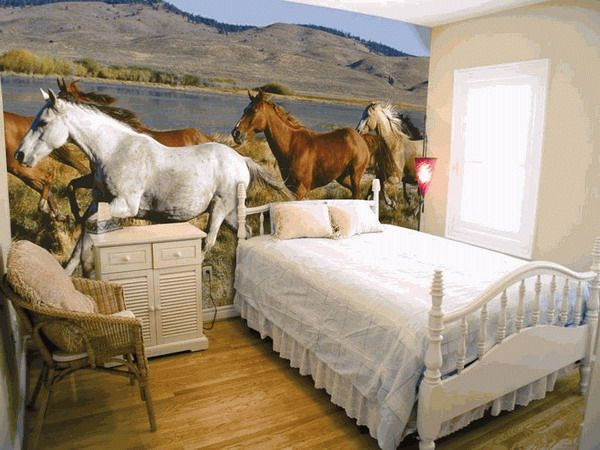 Horse bedrooms themed bedrooms for horse crazy girls for Themed bedroom wallpaper