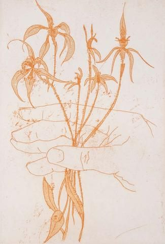 Clifton Pugh 'Hand and Orchids' - Etching