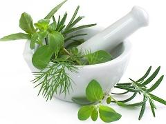 Tratamente si remedii naturiste din batrani