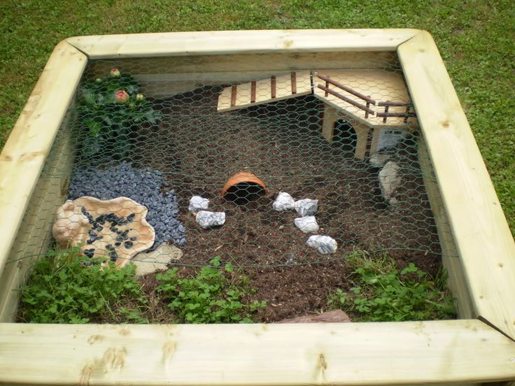 best 25 tortoise enclosure ideas on pinterest tortoise habitat turtle enclosure and turtle. Black Bedroom Furniture Sets. Home Design Ideas